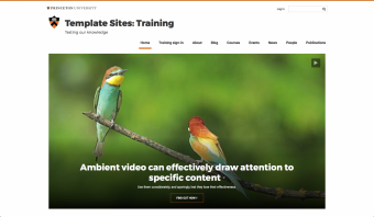 an example of the Ambient Video feature in use on a site's home page.